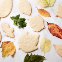 biscuits automne 2018